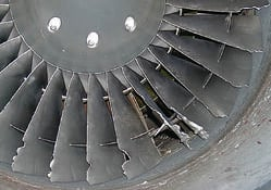 TFE731-Bird-Strike_45-184_004_FIN.jpg
